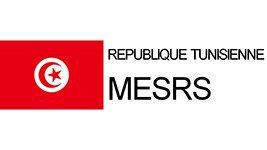 2004-ministere-lenseignement-superieur-et-recherche-scientifique-tunisie-mesrs